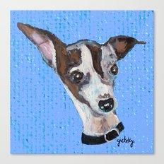 Mia the Italian Greyhound Canvas Print