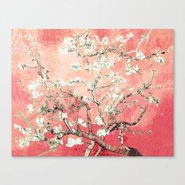 Van Gogh Almond Blossoms : Peach Canvas Print