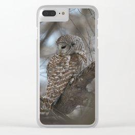 Sleepy Owl Clear iPhone Case