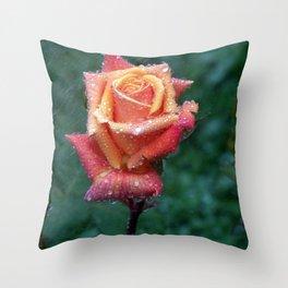 Rainy rose Throw Pillow