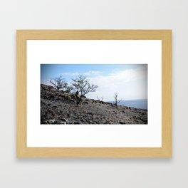 Hawai'i Desert Framed Art Print