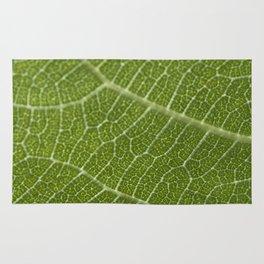 Fig tree leaf Rug