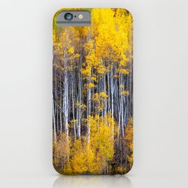 Autumn Aspens - Rows of Colorado Aspen Trees with Autumn Color in Reflection Illusion iPhone Case
