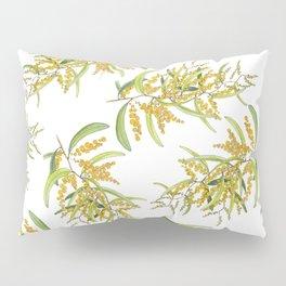 Australian Wattle Flower, Illustration Pillow Sham