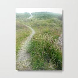 Path of Glory Metal Print