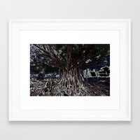 fig Framed Art Prints featuring Fig by Shemaine