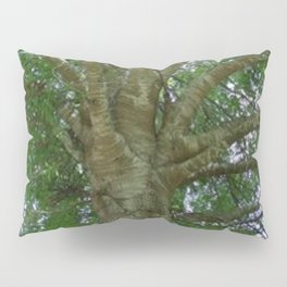 Wise Old Tree Pillow Sham