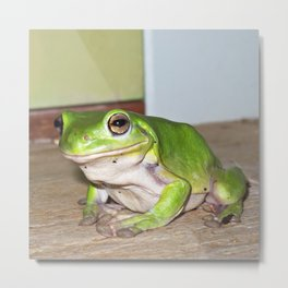 Freddy frog waiting for dinner Metal Print