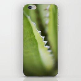 Striped Agave Macro iPhone Skin