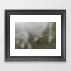 Isolate Framed Art Print