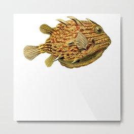 Fish Ernst Haeckel Metal Print