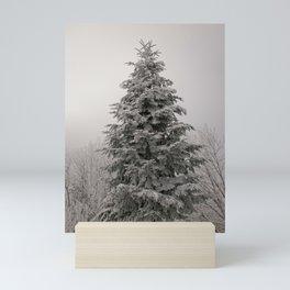 Tall Snow covered pine tree in Schwyz in Switzerland Mini Art Print