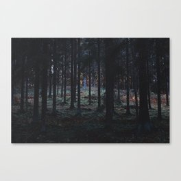 forest / last minute deal for a guilt trip Canvas Print