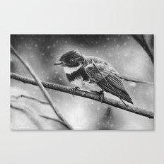 Winter Bird Canvas Print