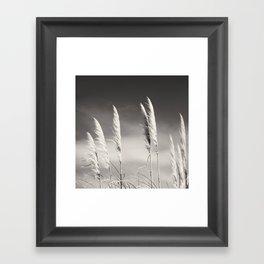 Toi Toi Framed Art Print