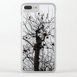Winter's Apples Clear iPhone Case
