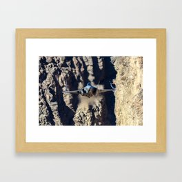 F-35 in Death Valley Framed Art Print