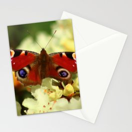 Peacock Butterfly on garden blooms Stationery Cards