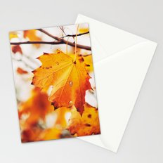 Autumn 24431 Stationery Cards