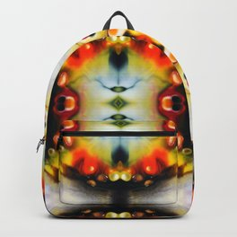 Solar Winds 1 Backpack