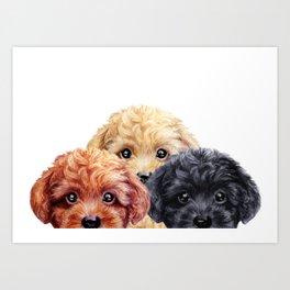 Toy poodle trio, Dog illustration original painting print Art Print