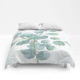 Eucalyptus Silver Dollar Comforters