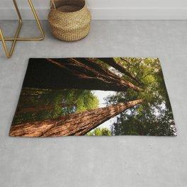 Redwood Tree Tops Rug