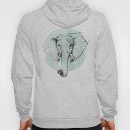 Elephant sketch // Aqua Blue Hoody