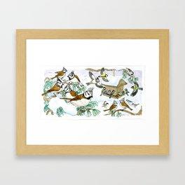 Birds in Winter, European Tits Framed Art Print