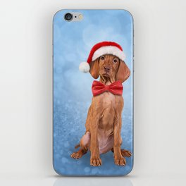 Drawing funny Vizsla pointer in red hat of Santa Claus iPhone Skin