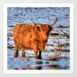 Hamish the Scottish Highland Bull in Winter Snow Art Print