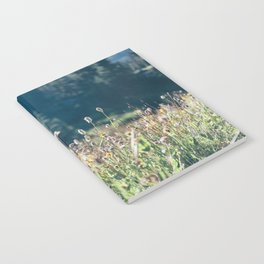 FALL FIELDS | 01 Notebook