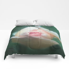 Rose bud Comforters