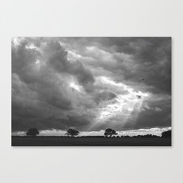Birds flying in front of a dramatic sky. Hilborough, Norfolk, UK Canvas Print