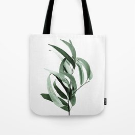 Eucalyptus - Australian gum tree Tote Bag