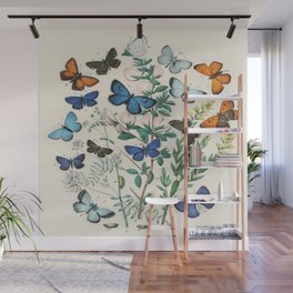 Vintage Scientific Illustration Butterfly Botanical Floral Lithograph Encyclopaedia Diagrams  Wall Mural
