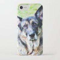 german shepherd iPhone & iPod Cases featuring GERMAN SHEPHERD PHOTOGRAPH by Allyson Johnson