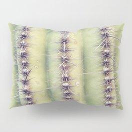 Cactus, Cactus Texture, Desert Plants Pillow Sham