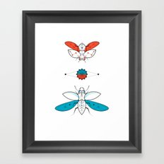 Two Insects II Framed Art Print