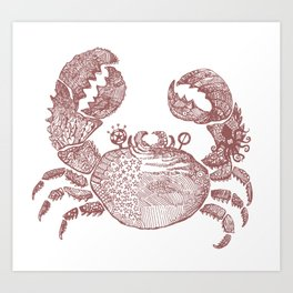sea crab Art Print