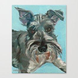Schnauzer Dog Portrait Canvas Print