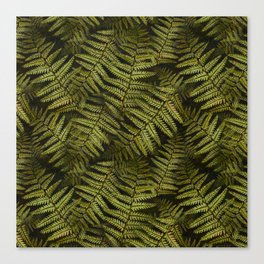 Among the ferns in the forest (military green) Canvas Print