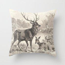 Antique Deer Scene in Nature Throw Pillow