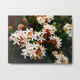 Jade Blossoms Metal Print