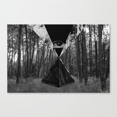 From the Eye Canvas Print