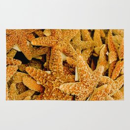 Summer Photo : Starfishes in Key West, FL Rug