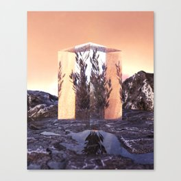 85-2021 Canvas Print