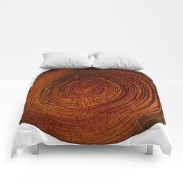 Magma Tree Rings Comforters
