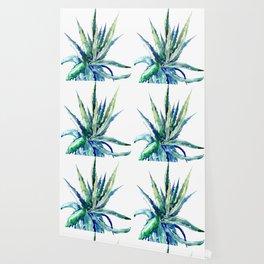 Aloe Vera, Succulent Plants turquoise blue, desert plants succulent design Wallpaper