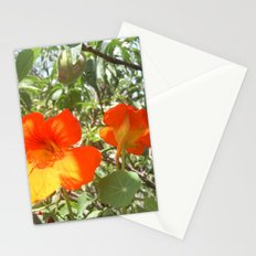Loving Flowers Stationery Cards